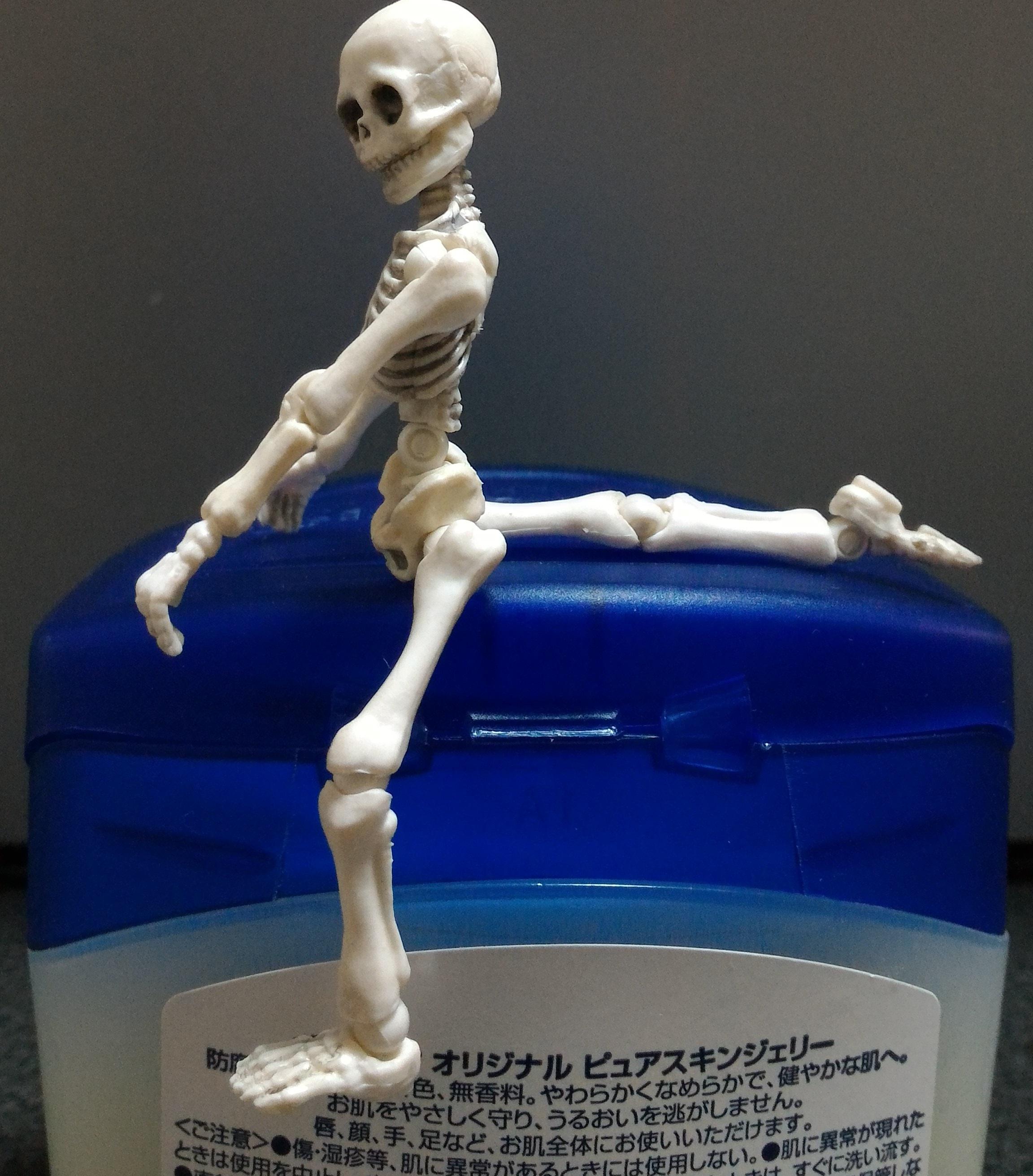 股関節前面のストレッチ