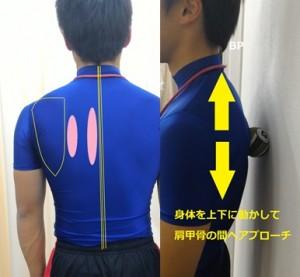 肩甲骨へのマッサージボールのやり方