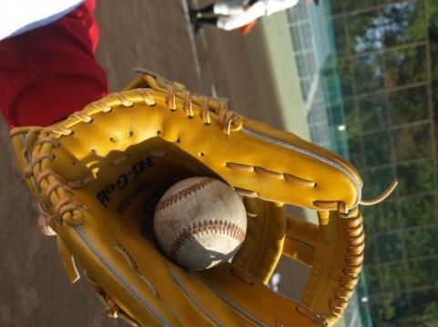 子どもの野球