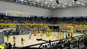 日本のバスケの問題点
