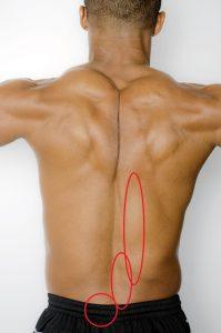 腰の痛くなりやすいポイント