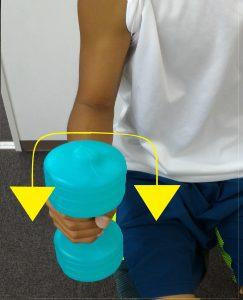 前腕の回内回外